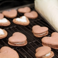 Pink Velvet Macarons [recipe]