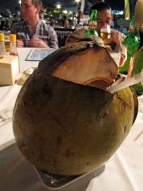giant coconut