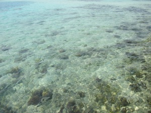 super clear water!! just two hour away from that sewage soup by jakarta